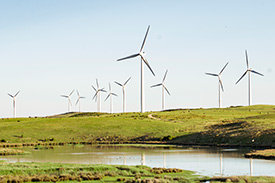 Image of wind farm with clear blue skies